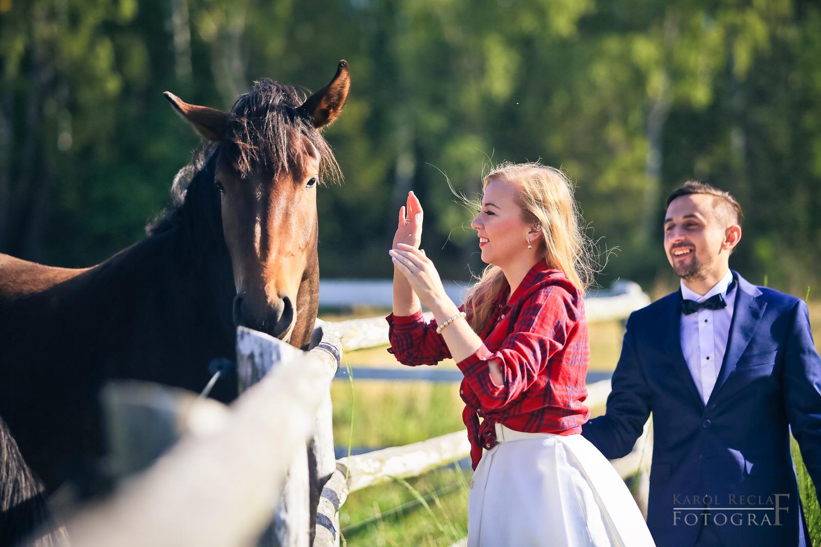 zdjęcie ślubne z koniem